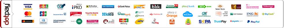 Kanały płatności w sklepie Conex24